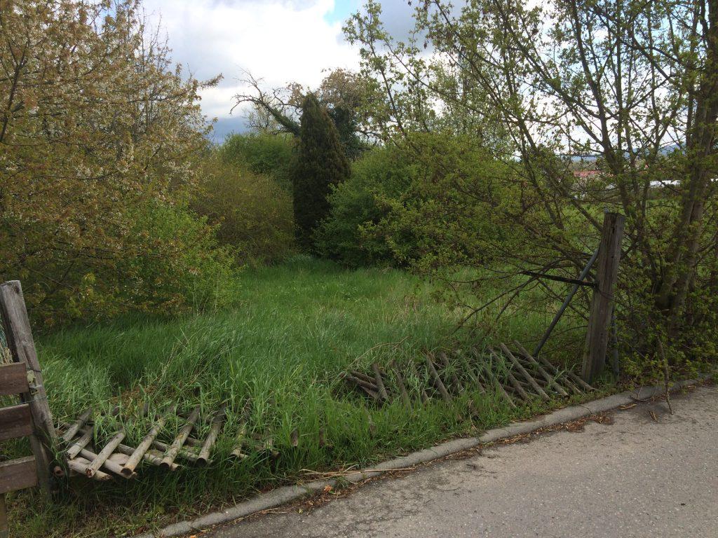 Der Garten im ursprünglichen Zustand: völlig verwildert 2. Ansicht